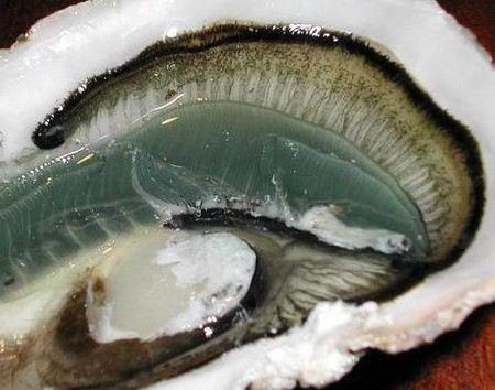 Житель Британии нашел жемчужину в устрице, когда пытался избавиться от похмелья.