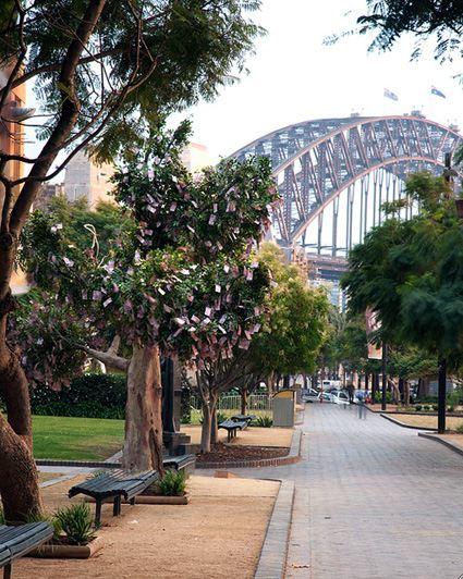 RaboDirect - онлайн банк провел эксперимент в одном из центральных парков Сиднея