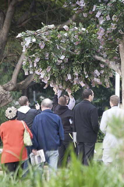 Австралийское дерево чудес