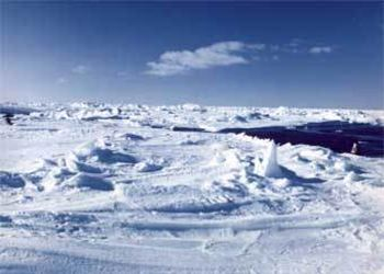 Учёные связали последние аномалии с Арктикой