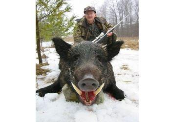 Охотничья фауна РФ богата и неповторима