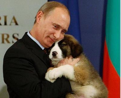 Путина потроллят?