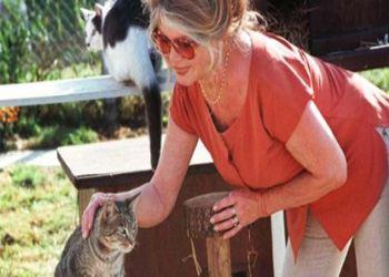 Актриса всем известна любовью к животным