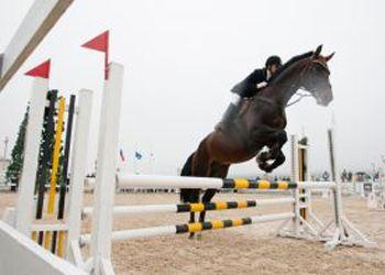 Соревнования состоялись 19 мая на территории клуба «Белая лошадь»