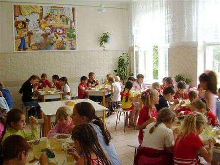 Глава Роспотребнадзора Геннадий Онищенко хочет перевести детские сады на полуфабрикаты.