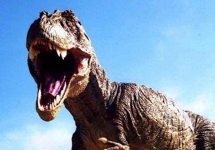У динозавров очень большие зубы