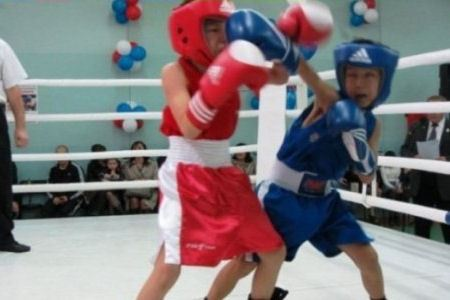 Юные бойцы на ринге