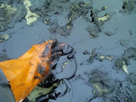 Загрязненные нефтью площади в Ханты-Мансийском АО сокращаются