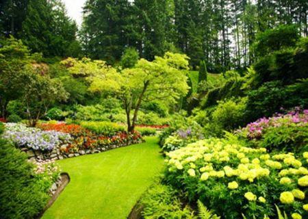 Цветочный ландшафтный дизайн