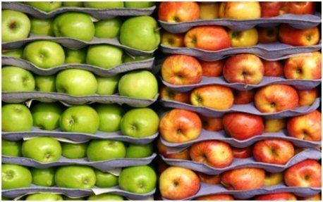 Главное - правильно сохранить яблоки!