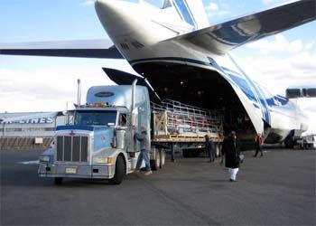 Аэрофлот отказался выполнять специализированные грузоперевозки