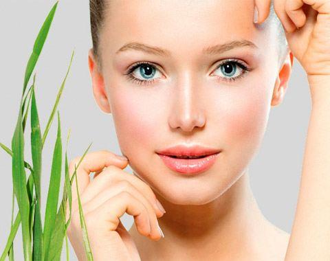 Cocomint – поможет сохранить молодость и красоту