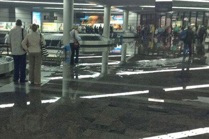 Фото: аэропорт Сочи