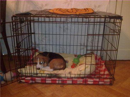 Клетка для щенка