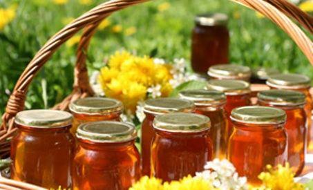 Научитесь отличать настоящий мед от подделок