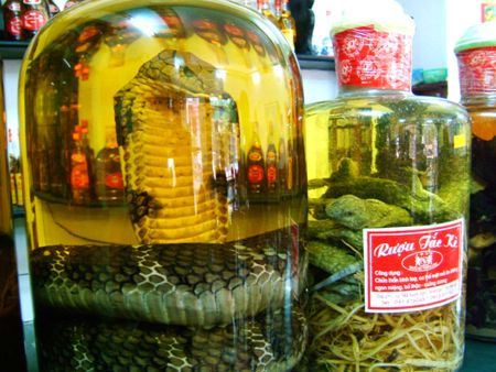Вино со змеей