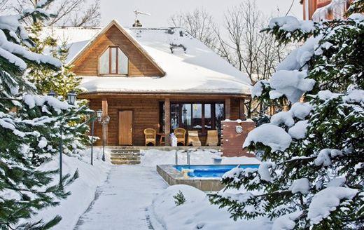 Коттеджи на новогодние праздники обычно арендуют на 2-3 дня