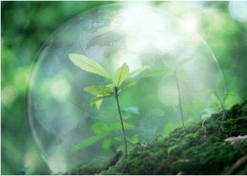 В столице России проведут четвертый Всероссийский съезд по защите окружающей среды