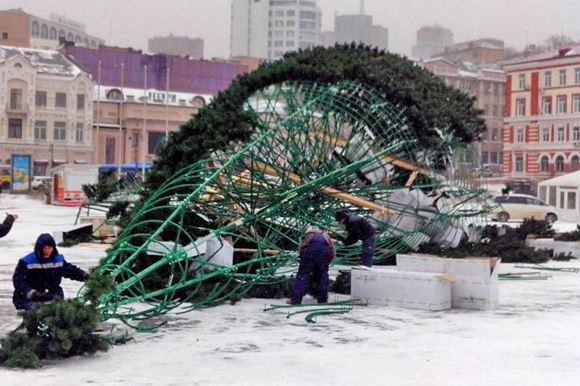 В центре Владивостока упала главная новогодняя елка города