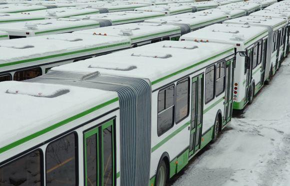 В Санкт-Петербурге закупили почти три сотни новых автобусов