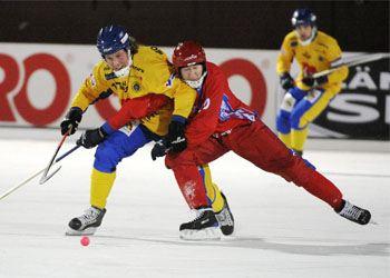 На ЧМ-2014 в Иркутск приедут хоккеисты из Японии и Германии