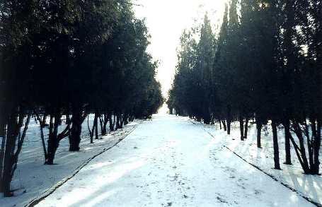 В Коктебеле зимой тишина и покой
