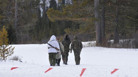 Четверых сотрудников Министерства охраны природы уволили за охоту на изюбра