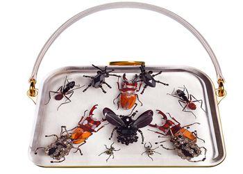 В моде сумки с изображениями насекомых