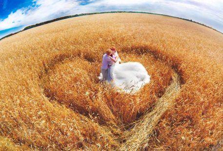 Отлично получаются свадебные фото на фоне пшеничного поля!
