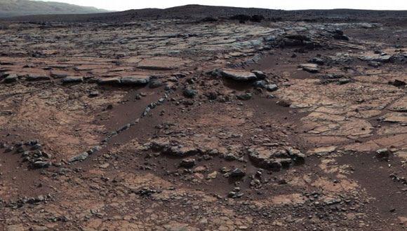 Житель США разглядел на фотографиях марсохода Curiosity гриб