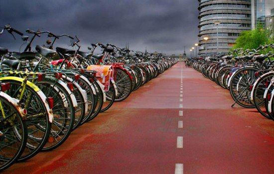 Жителей ОАЭ пересадят на велосипеды