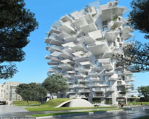 Во Франции построят уникальный дом-дерево
