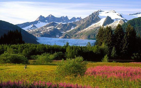 На сайте Белого дома появилась петиция о возвращении Аляски России