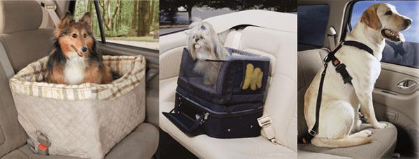специальные ящики и ремни безопасности для собак