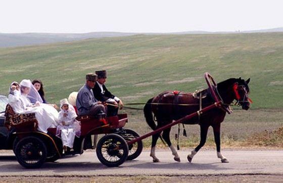 Необычные обычаи: В Дагестане на свадьбах веселятся только мужчины