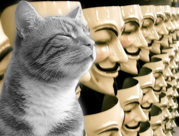 Марсельский кот-взломщик может пополнить ряды Anonymous