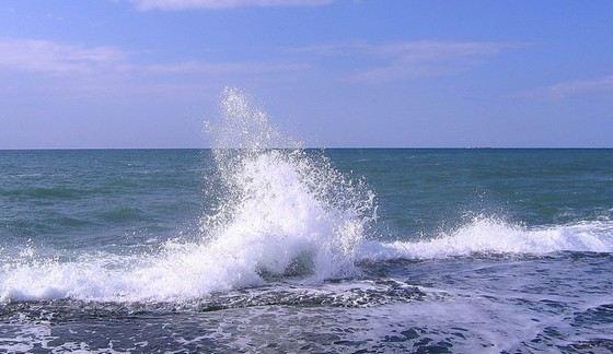 Морская вода бывает разной степени солености