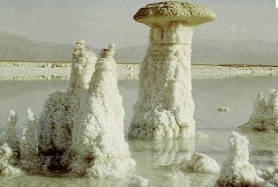 В некоторых морях концентрация солей зашкаливает