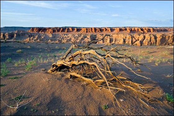 пустыня Митраба - самое жаркое место в Азии