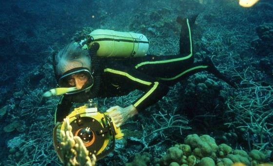 Жак-Ив Кусто изучал красоты морей