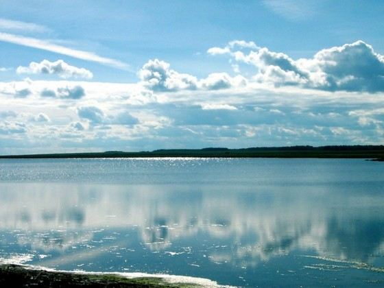 Lake Chany is included in the list of the largest lakes in Russia