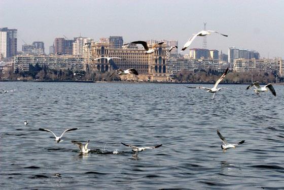 Каспийское море не только самое большое озеро в России, но и в мире