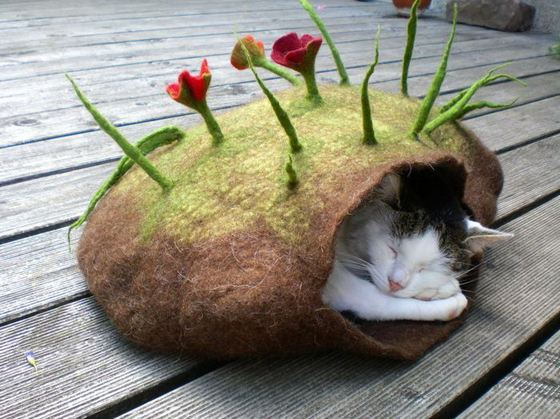 Дом для кошки очень важен