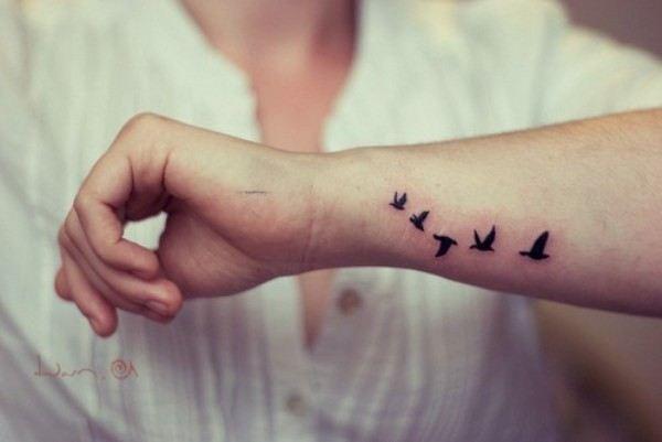 Стайка птиц