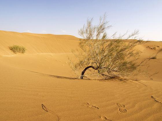 Пустыня Деште-Лут в Иране - самое жаркое место в мире