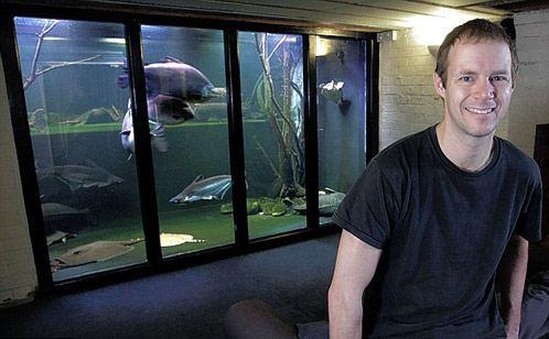 Джек Хискот в своем домашнем аквариуме разводит огромных рыб