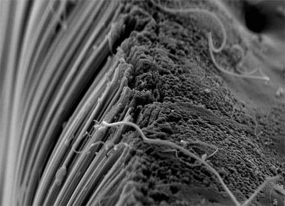 Особые нано-трубки делают материалы особенно прочными