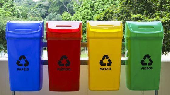Раздельный сбор мусора - один из вариантов решения экологической проблемы