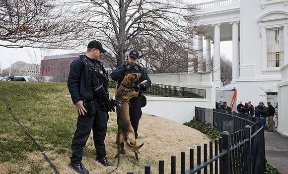 Кинувшего бумагу в Белый дом американца обвинили в применении оружия