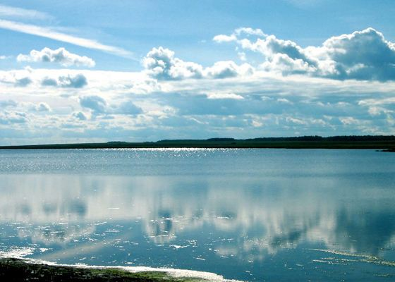 One of the largest lakes is Lake Chany.